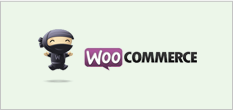 wooconmmerce_box