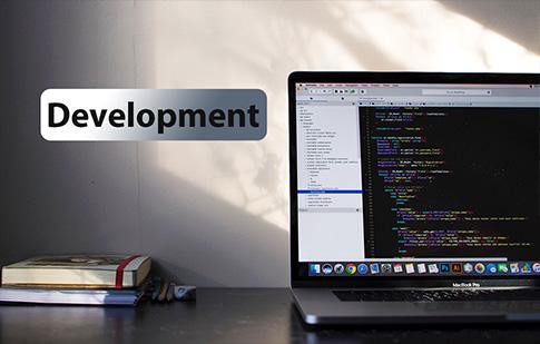 develop3